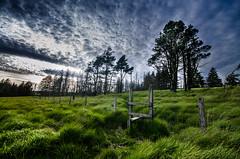 stile to the woods (Glen Parry Photography) Tags: glenparryphotography landscape country d7000 nikon outdoors reservoir sigma sigma1020mm uk widdop widdopreservoir calderdale calderdaleway yorkshire