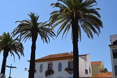DSC_0306 (aitems) Tags: aveiro portugal city