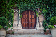 Doorways (Fret Spider) Tags: foliage growth overrun architecture door doorway pillar gothic universityofchicago campus afternoon summer season wander walkabout canon5dsr otus1455 otus1455ze distagonotus5514ze zeiss manuallens lush plant ze wood beauty love study education