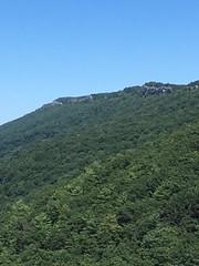 spruce knob (GAWV) Tags: spruce knob wv mountains views vacation peace beauty pines elevation spruceknob westvirginia