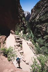 Zion 2018-063_ILCE-7RM3-19 mm-180529_180529-ILCE-7RM3-19 mm-122906__STA5196 (Staufhammer) Tags: sony sonya7riii a7riii sonyalpha sony1635mmf28gm sony1635mm sonygm sony85mmf18 zion nationalparks nationalpark zionnationalpark grandcanyon landscape alphashooters travel valley fire state park valleyoffire valleyoffirestatepark
