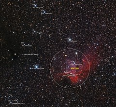 NGC7380 Notes (Roberto_Mosca) Tags: