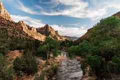 Zion 2018-095_ILCE-7RM3-24 mm-180529_180529-ILCE-7RM3-24 mm-181023__STA5319 (Staufhammer) Tags: sony sonya7riii a7riii sonyalpha sony1635mmf28gm sony1635mm sonygm sony85mmf18 zion nationalparks nationalpark zionnationalpark grandcanyon landscape alphashooters travel valley fire state park valleyoffire valleyoffirestatepark