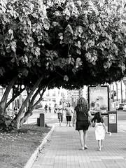 (euríale) Tags: mujer niña girl kid woman black white street tree