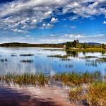 Tupper Lake  New York - Adirondack Park - Reflection thumbnail