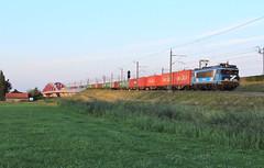 RFS 101001 @ Hattemerbroek (Sicco Dierdorp) Tags: railpromo rfs serie1700 1781 101001 covorden containershuttle bentheimer eisenbahn zwolle hanzeboog ijsselbrug ijssel hattem hattemerbroek amersfoort wezep veluwelijn