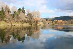 Reflections on Lake Tutira (Karen Pincott) Tags: laketutira hawkesbay newzealand lake water reflections trees clouds winter