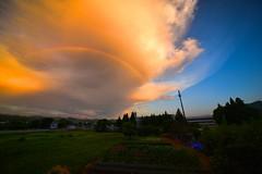 Sunset rainbow (Takeuchi@photo) Tags: rainbow rain sunset magichour landscape nikond750 nature cloud sky