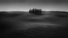 gli cipressi (wolffslicht) Tags: toskana tuscany italy blackwhite lanscape outdoor