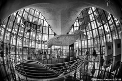 oceanoHall (Marco Pacini) Tags: marcopaciniphoto architecture architettura archilovers archistar bn bnw blackandwhite blackwhite blackandwhitephoto spain espana valencia club16 fish fisheye