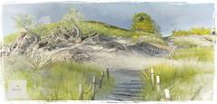 Achill Island now open!  client work Landscape & Design (Minnie Atlass - Landscaper & Designer) Tags: ireland achill mayo cliff island beach sand sea ocean scenic