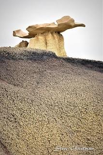 Sculptured Through Time