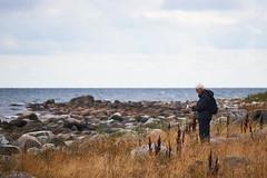 DSC02113-1 (alavrsen) Tags: hirsholmene denmark island nature sanctuary protedted sea seascape stones landscape rocks birds wildlife wildnature vegetation boat frederikshavn