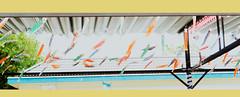 lich13 (Trần Cao Min) Tags: sun classic sunshine sony sight smooth sea sky smile sunset shine style beautiful blend beautyful beauty boy bird ben birth beautyfulskin afternoon a6000 alpha nam sad hair tphcm tree town trời koi lay out layout design