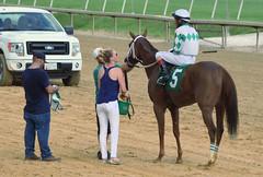 "2018-08-11 (48) r6 Victor Carrasco on #5 Lil Habit of Mine for the win (JLeeFleenor) Tags: photos photography md maryland marylandracing laurelpark outside outdoors jockey جُوكِي ""赛马骑师"" jinete ""競馬騎手"" dżokej jocheu คนขี่ม้าแข่ง jóquei žokej kilparatsastaja rennreiter fantino ""경마 기수"" жокей jokey người horses thoroughbreds equine equestrian cheval cavalo cavallo cavall caballo pferd paard perd hevonen hest hestur cal kon konj beygir capall ceffyl cuddy yarraman faras alogo soos kuda uma pfeerd koin حصان кон 马 häst άλογο סוס घोड़ा 馬 koń лошадь lacey laceygaudet gaudet"