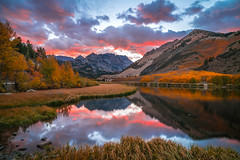 North Lake High Sierras Autumn Aspens Leaves Clouds Fine Art Landscape Photography: Sony A7RII Eastern Sierras Aspen Nature: Elliot McGucken California Fall Foliage Autumn Colors Scenic Vista View! Carl Zeiss Sony T* FE 16-35mm F4 ZA OSS Red Orange Leaves (45SURF Hero's Odyssey Mythology Landscapes & Godde) Tags: north lake high sierras autumn aspens leaves clouds fine art landscape photography sony a7rii eastern nature elliot mcgucken california fall foliage colors scenic vista view carl zeiss t fe 1635mm f4 za oss red orange yellow