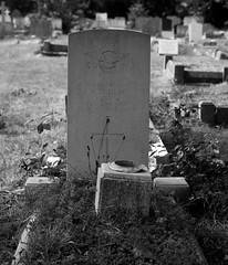CWGC Sergeant W D Heap Observer Royal Air Force (IanAWood) Tags: bringoutthedead cemeteryclub citiesofthedead graveyards headstonehunting lbofrichmond londonsdead londonsnecropolis londonsvictoriancemeteries nikkorafs58mmf14g nikondf twickenham twickenhamburialboard twickenhamcemetery walkingamongstthedead walkingwithmynikon