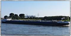 TMS HILLEGERSBERG (rasafo66) Tags: duisburg rhein nrw nordrheinwestfalen deutschland tankschiff tanker tankship schiff ship rhine tms canonsx260