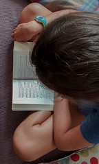 2018-08-18 - Samedi - 230/365 - Lire lire lire - (Chantal Goya) (Robert - Photo du jour) Tags: 2018 aout france repos lire livre adèle lirelirelire chantalgoya canapé