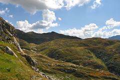 DSC_2332 (Puntin1969) Tags: nikon reflex svizzera montagna agosto estate viaggio ticino vista scorcio alpi animali balcone sole