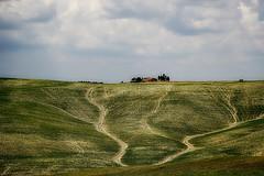 senza titolo. (Enzo Ghignoni) Tags: campagna case prati colline piante verde