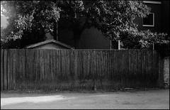 (Jonas.Bergmeier) Tags: film shootfilm zorki 4k jupiter 12 jupiter12 foma fomapan 400 push 800 rodinal 125 borderlands street grain filmgrain