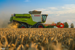 Harvest Time by CLAAS (martin_king.photo) Tags: harvest harvest2018 ernte 2018harvestseason combineharvester combine harvester new modernmachine summerwork powerfull martin king photo machines strong agricultural great czechrepublic agriculturalmachinery farm working modernagriculture landwirtschaft martinkingphoto moisson machine machinery field huge big sky agriculture power dynastyphotography lukaskralphotocz day fans work place yellow gold golden eos country lens rural camera outdoors outdoor goldenhour colours landscape fields lines claaslexion goldenfields evening
