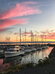 Powell River (Shauna Ullman) Tags: powellriver powellriverbc bc explorebc sunshinecoast sunshinecoastbc iphonography sunset explorecanada sharethecoast snapshotcanada canadiansummer tourismbc ohcanada