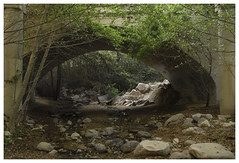 ANF_0698 (Thomas Willard) Tags: forest california foothills chaparral national stream bridge creek angeles