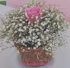 Diseñamos arreglos personalizados adaptados a todos los gustos.  Elige entre: ☑ Rosas de todos los colores ☑ Gerberas ☑ Lirios  ☑ Orquídeas  ☑ Girasoles y más.  #ViveLaExperienciaZabrisky:  🏆 Aceptamos todas las tarjetas débito/crédito nacionales e (floristeriazabrisky) Tags: photooftheday romance couple florals happy hugs kiss smile spring flowersofinstagram beautiful me flowerstylesgf girasol floral flowers flowerstagram bff bouquet redroses girlfriend weddingday adorable chocolate love bf balloons boyfriend weddings flowermagic sunflowers petals cute summer ferrerorocher petal plants floweroftheday loveher wedding sopretty together gf teddybear pretty blossom lovehim vivelaexperienciazabrisky nature sunflower flower flowerslovers instalove kisses forever fun