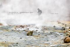 Hveradalir  - Geothermal Area (Obliot) Tags: 2018 geyser obliot sony a7riii roccia vapore giallo bollente ponte geotermico bolle nord a7r3 iceland acqua estate energia parco sentiero