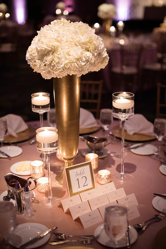 "Centerpiece Lighting at Double Tree Cedar Rapids • <a style=""font-size:0.8em;"" href=""http://www.flickr.com/photos/81396050@N06/29919881988/"" target=""_blank"">View on Flickr</a>"
