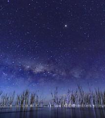 pano vertical (marianodearriba) Tags: epecuen nocturna via lactea monte lucero