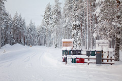 Snow snow snow (SmalltownSwede) Tags: piteå sweden scandinavia canon photography photo winter snow january trees forest mailbox mailboxes