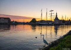 Colourful landscape (✦ Erdinc Ulas Photography ✦) Tags: netherlands dutch holland nederland hoorn city water bird animal view colourful landscape panasonic ship harbour coast building sky colours hoofdtoren stad moon orange yellow red clouds grass focus gold