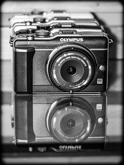 Olympus. E-PL1. (CWhatPhotos) Tags: cwhatphotos camera photographs photograph pics pictures pic picture image images foto fotos photography artistic that have which contain olympus olympusepl1 epl1 microfourthirds micro four thirds pen