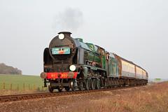 The Cunarder (Treflyn) Tags: cunarder southern railways ln class 460 850 lordnelson northside lane foot crossing ropley alresford 2011 midhants spring steam gala