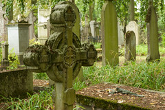 Centrale begraafplaats Brugge (jolandavanwoerkom1) Tags: begraafplaats brugge erfgoed graf grave forest
