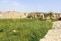 IMG_7992 (Vito Amorelli) Tags: segesta sicily dorictemple greektheater