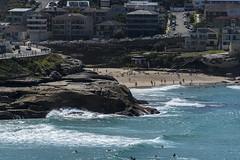 tamarama (Greg Rohan) Tags: blue surfers cars traffic rock swimmers people ocean sand water houses australia sydney tamarama beach d750 2018 nikon nikkor buildings building waves landscape wave