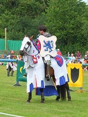 DSCF3835 (SierPinskiA) Tags: ruffordabbeycountrypark rufford knightsofnottingham fujixs1 jousting medieval horse knights goldeneagle falcon