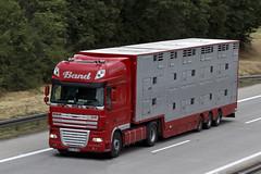 "Daf xf105 ssc "" BAND "" (D) (magicv8m) Tags: tir trans transport lkw daf"