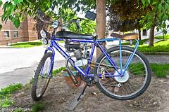Gas Powered - Ottawa 06 18 (Mikey G Ottawa) Tags: mikeygottawa canada ontario ottawa street city bicycle velo fahrrad bike gasengine larry larrythehandyman