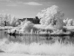 IR UCD (nl042) Tags: lake pond ucd universitycollegedublin infrared ir r72