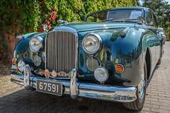 Jaguar MK8, Bj. 1957, 6 Zylinder mit 3443 cm3 und 220 PS (Frank Güldner) Tags: jaguar mk8
