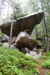 IMG_4670 (Alexander Malyshev) Tags: canon carpathians ukraine forest nature woods mounts