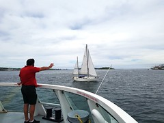 Man Waving at a Sailboat (Coastal Elite) Tags: sailboat sailing boat voilier bateau voile halifax novascotia harbor harbour waving wave salute hello man people ferry traversier transit port boating voiles thaïsii thaïs thais sails maritime nautical wholesome