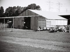 Corrugated iron farm building (Matthew Paul Argall) Tags: jcpenneyelectronicstrobepocketcamera fixedfocus 110 110film subminiaturefilm lomographyfilm blackandwhite blackandwhitefilm 100speedfilm 100isofilm building architecture barn corrugatediron farm