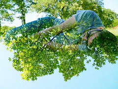Sleeping in the trees (double exposure) (max832) Tags: park europe denmark justforfun fun creative art sun green grass friendship june spring 2018 goodtime resting copenaghen doubleexposure zuiko25mm18 micro43 mft em10mark3 omd olympus