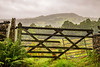 15th August 2018 (Rob Sutherland) Tags: dilapidated gate rain wet murky miserable dank fence drystone wall cumbria cumbrian lakeland lakedistrict lakes nationalpark ldnp hawkshead ambleside central mist fog green growing growth wooden uk england english britain british